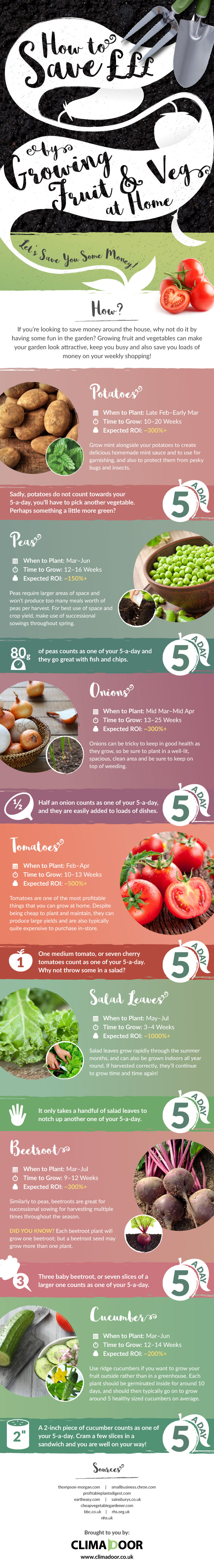 How to grow vegetables at home infographic