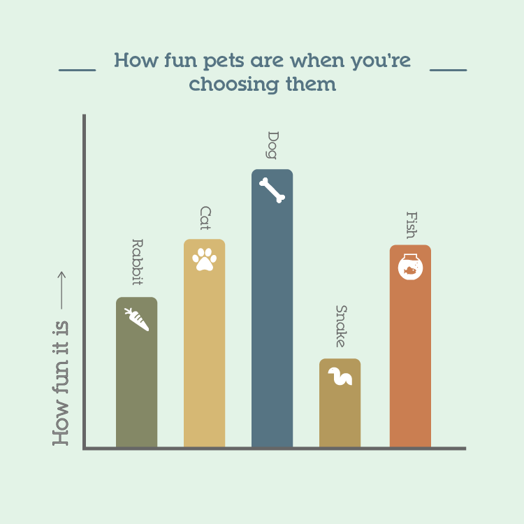 How fun pets are when you're choosing them