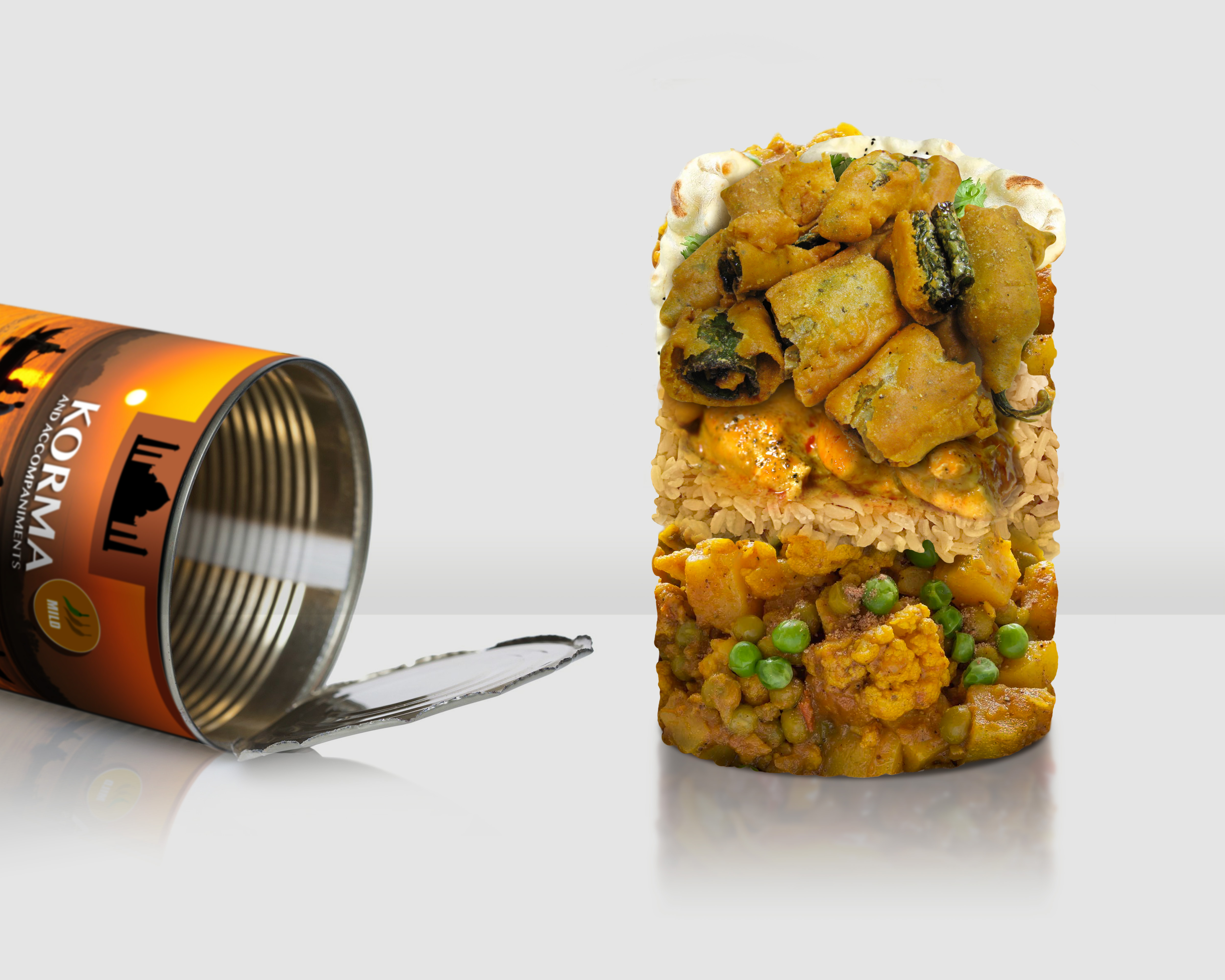 Tinned Indian Curry